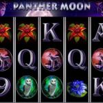 panther moon mobile