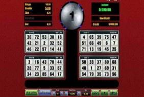 Silverball Bingo