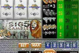 Big 5 Gamble